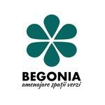 Spv Begonia S.R.L.