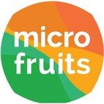 SC MICROFRUITS SRL