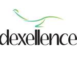 Dexellence Project S.R.L.