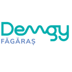 S.C DEMGY FAGARAS S.R.L.