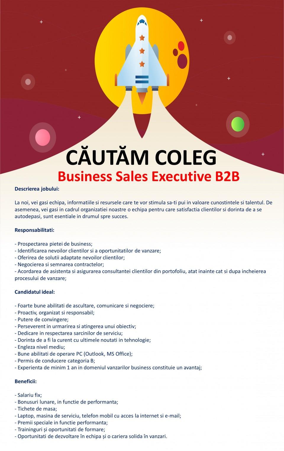 BUSINESS SALES EXECUTIVE B2B