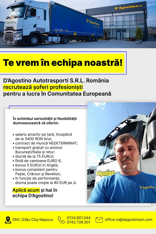 Sofer Comunitate - Salariu net 2900 € - NET Salary 2900 €